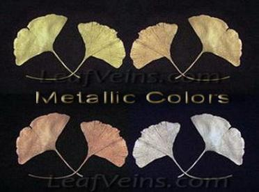 Ginkgo Leaves in Metallic Colors