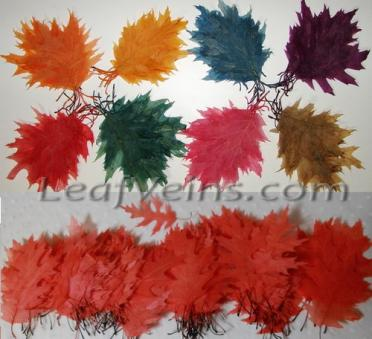 Oak Leaves Dyed to Order